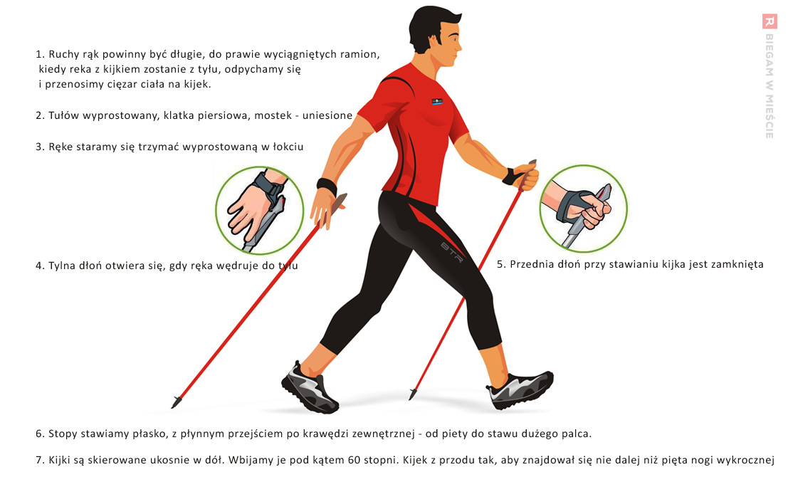 nordic-walking-grafika